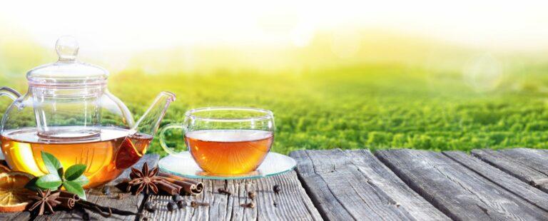 Tee: ein beliebtes Getränk