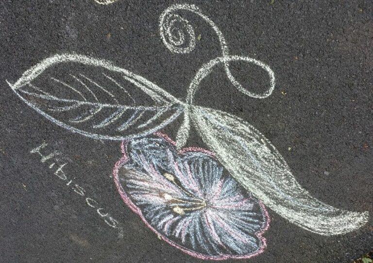 Botanisch stoepkrijten