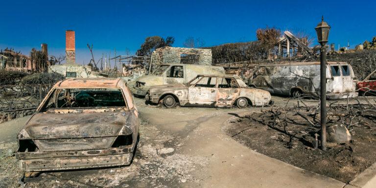 Factcheck: waarom brandt het bos?