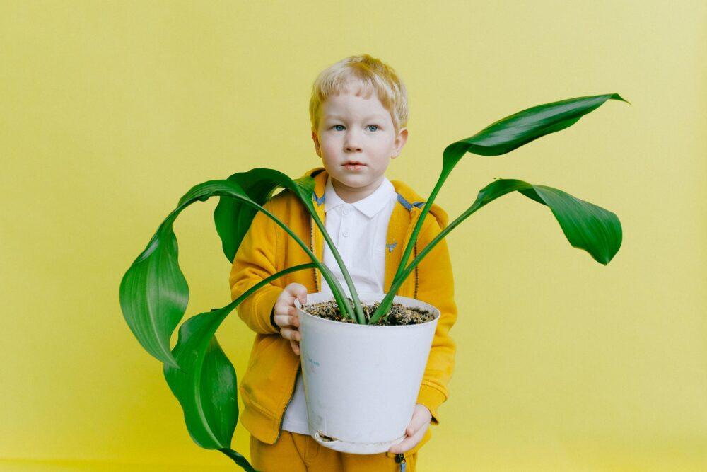 lessuggestie Juf & Meester Malmberg groeien en bloeien