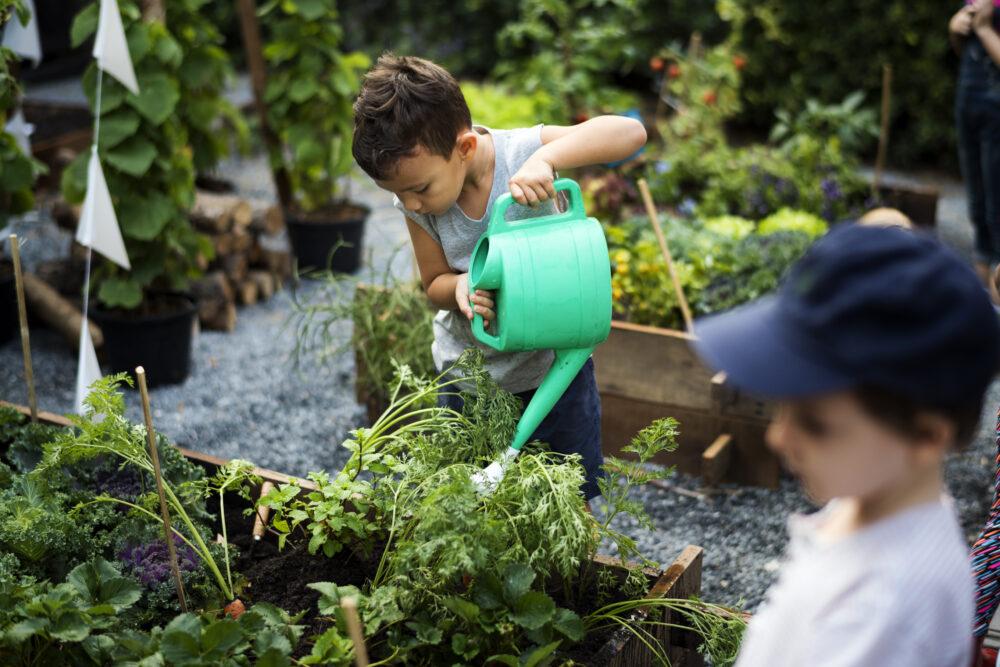 11 tips om een groenere klas te creëren Juf & Meester Malmberg