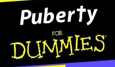Puberbrein – worden pubers oneerlijk beoordeeld?