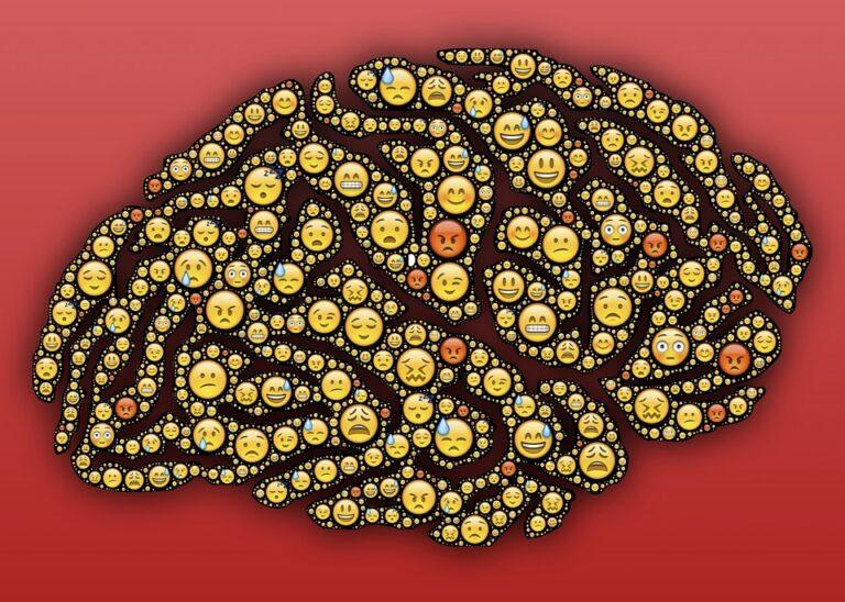 Hoger leerrendement met de Cognitieve Belasting Theorie