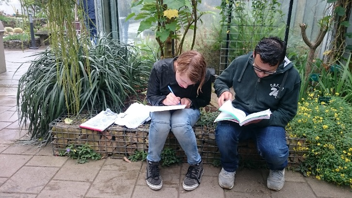 Docentblog: Toetsen in de tuin
