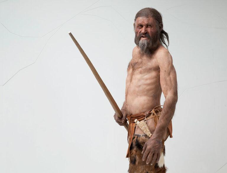 Het Ötzi-effect van vakintegratie