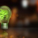 Earth Hour 2021: aandacht voor klimaatverandering