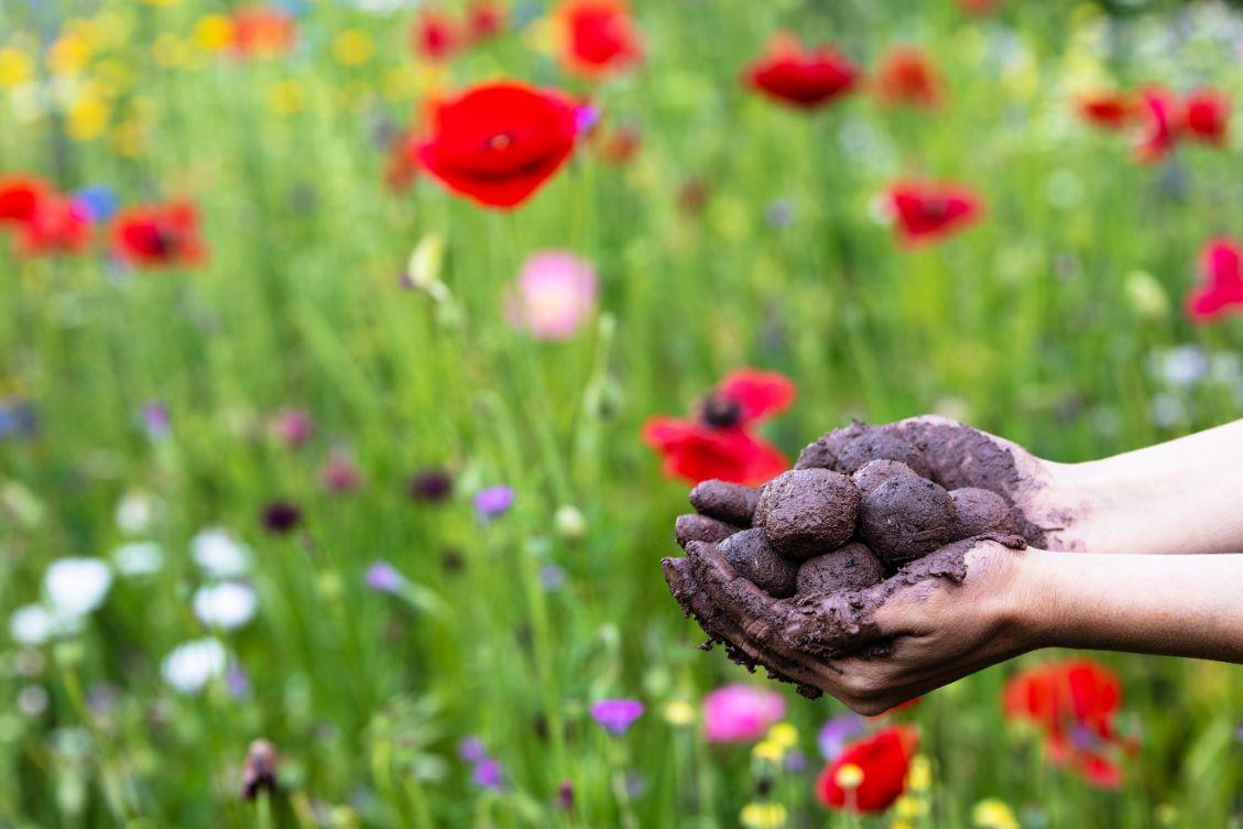Actueel Engels Bloemen handen Seed Bombs Malmberg