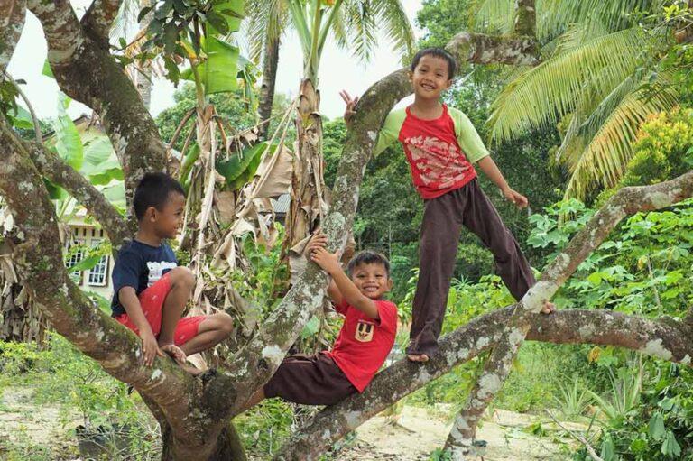 Eco-Kamp Indonesië – een unieke virtuele schoolreis!